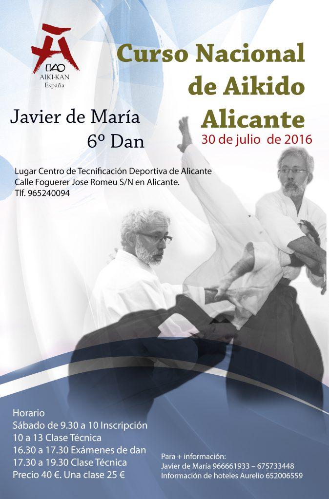 Aikido Alicante con Javier de María 6º Dan